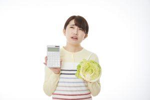 専業主婦でも即日融資を受けられる?